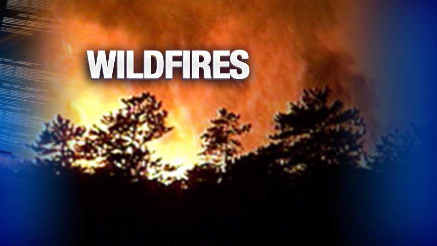 generic wildfires