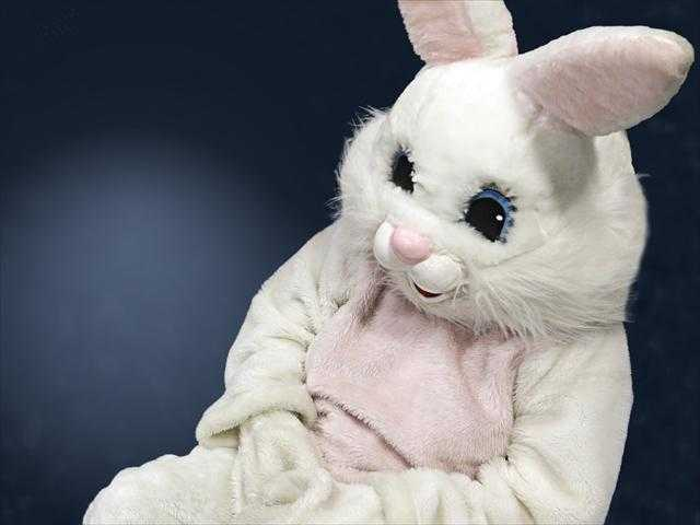 Police Officer Charged for Slapping Man Dressed as Bunny