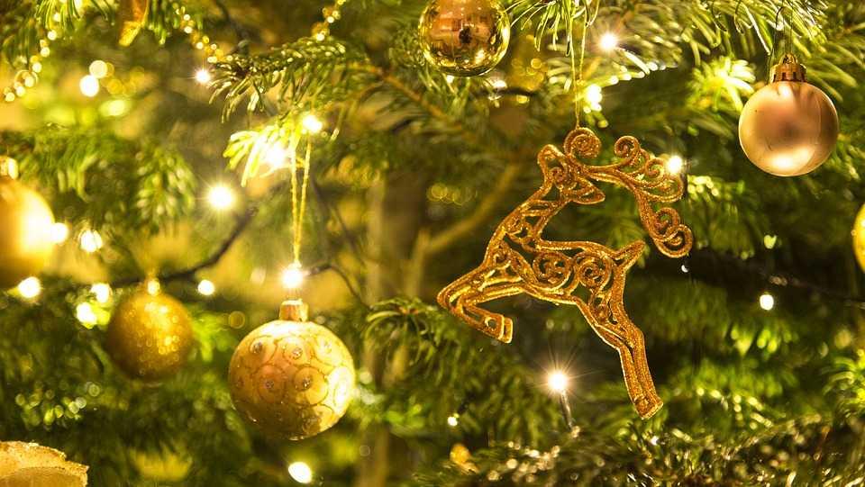 holidays,christmas,pixabay