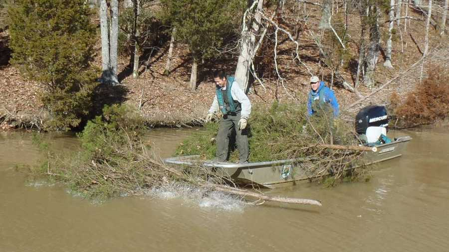 Kentucky and its fish would like your christmas tree for Ky dept fish and wildlife