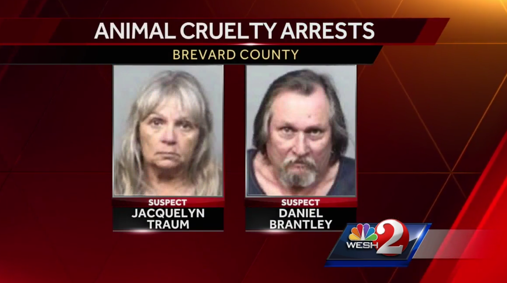 Image result for Man, woman arrested after 57 animals die in Brevard house fire