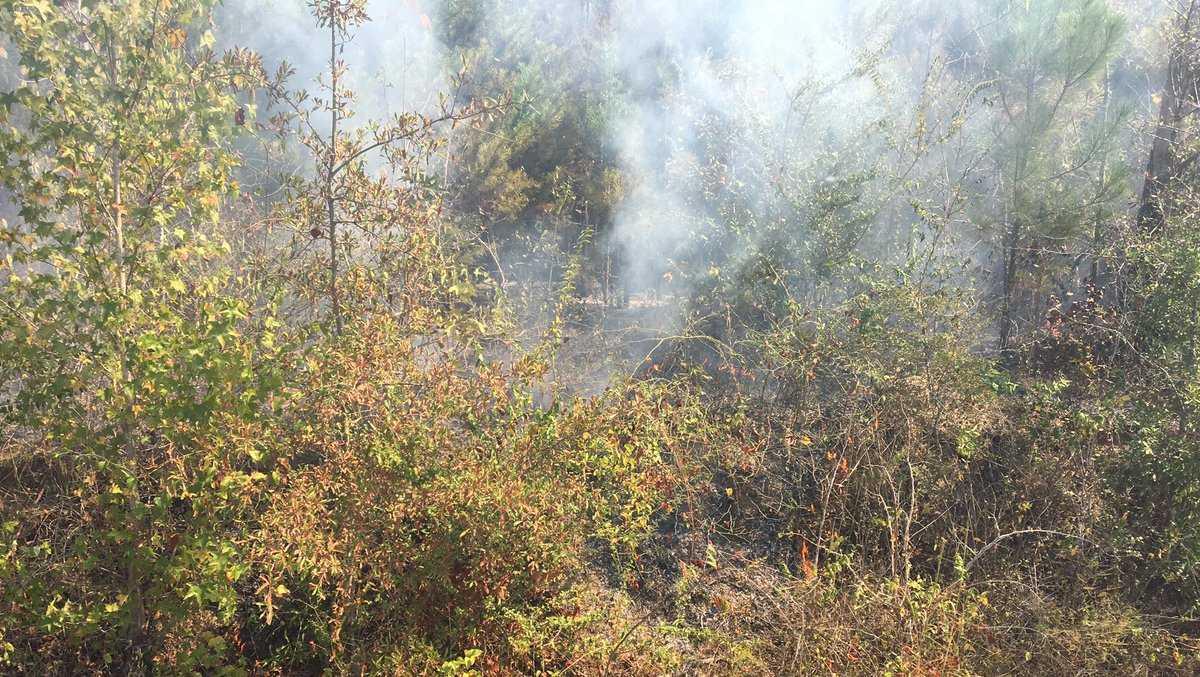 Cullman County wildfire
