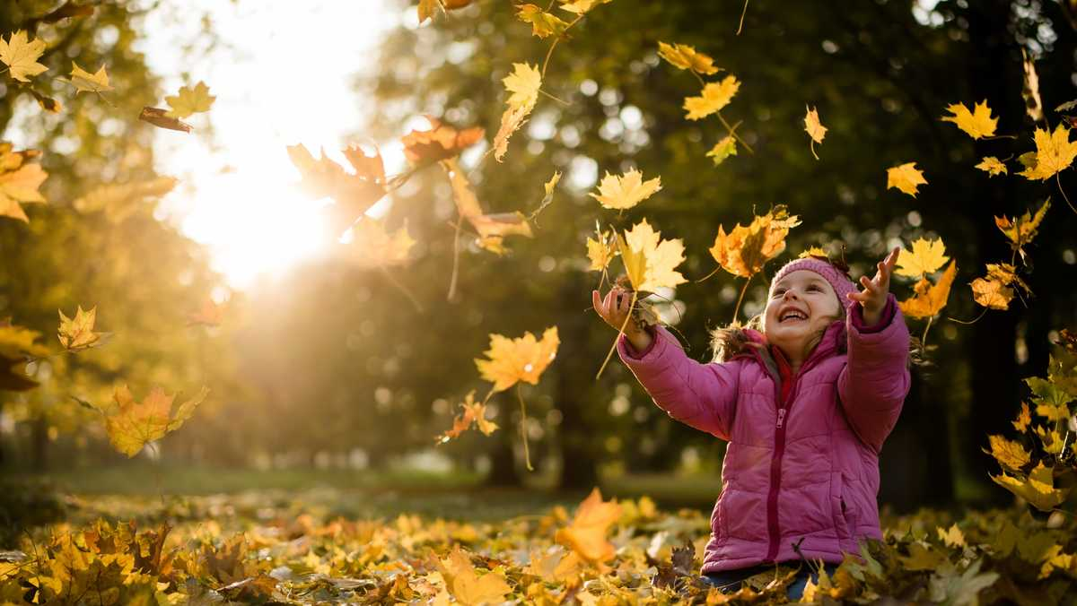 Here's 5 things you may not know about fall