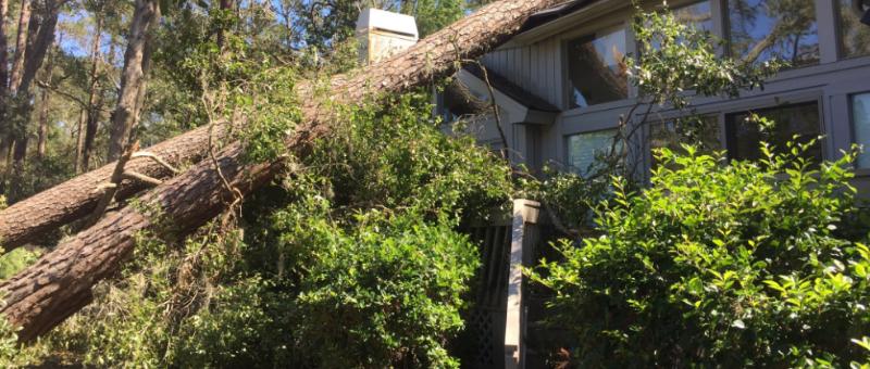 Hilton Head Island - Sea Pines Community