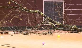 Storm damage in Hoover
