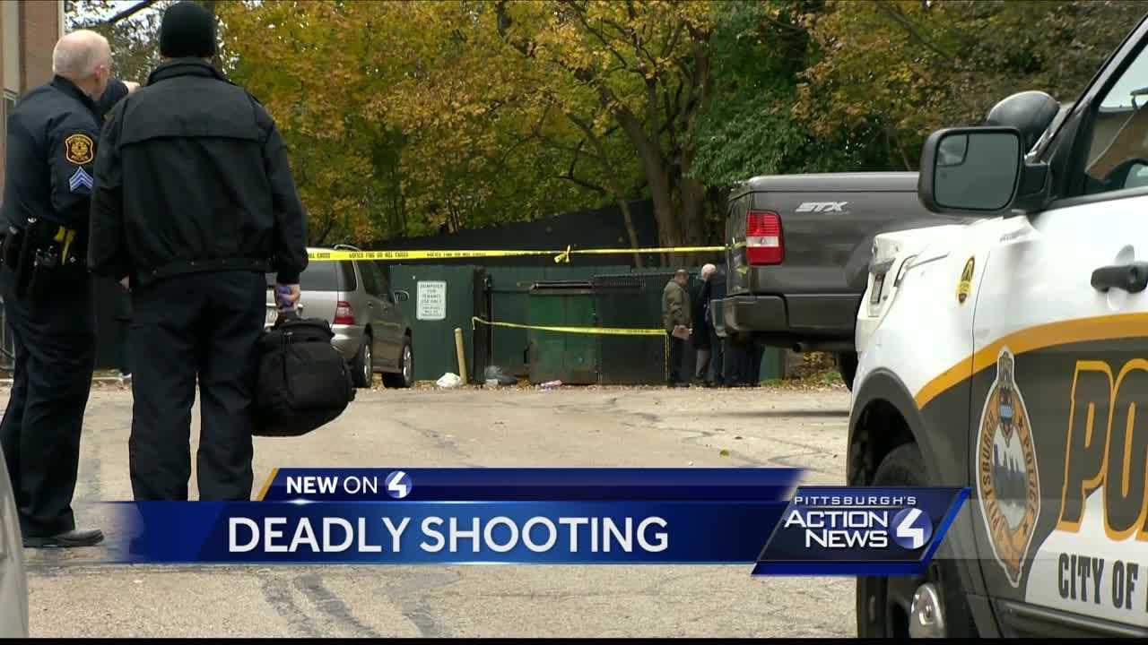 East Hills shooting