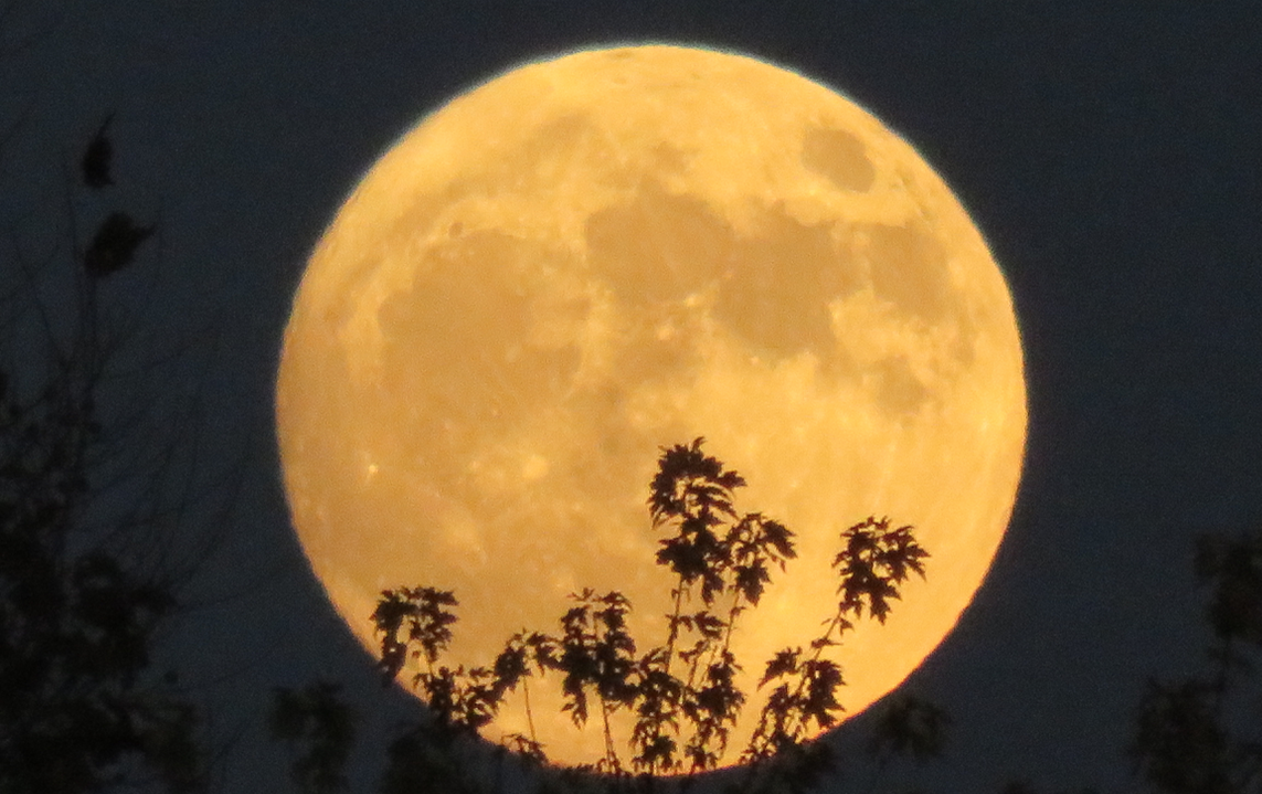Skygazers gear up for extra bright 'supermoon'