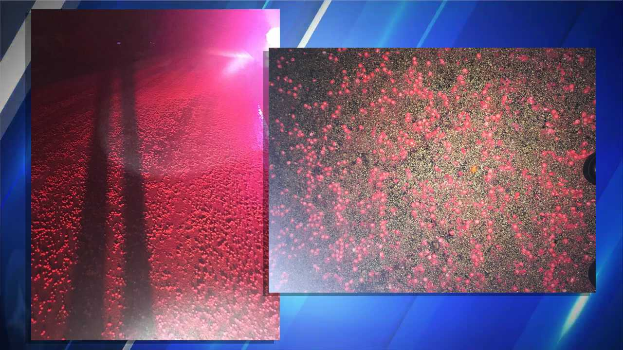 Thousands of Skittles fall onto Wisconsin highway