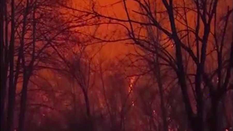 Tennessee wildfire