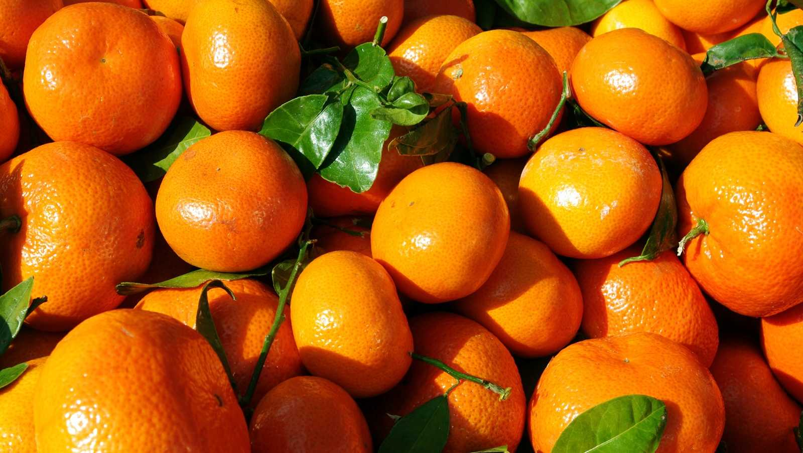 Stress Foods - Oranges
