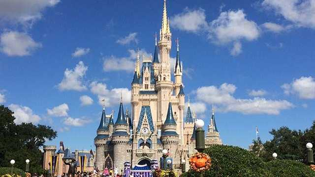 Disney World adding beer wine to 4 Magic Kingdom restaurants