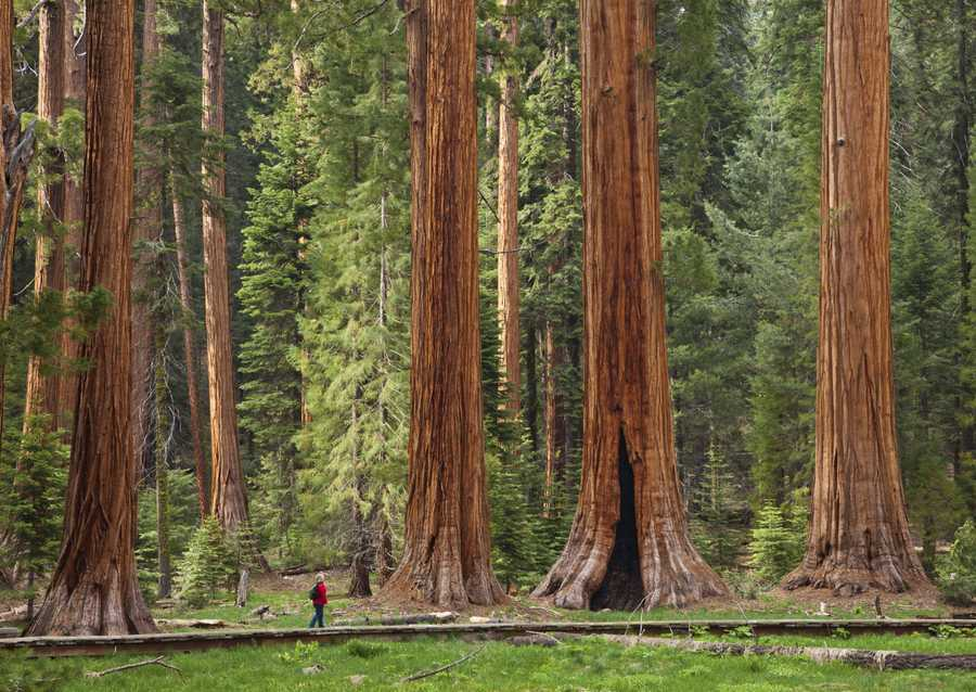 best places to camp in national parks