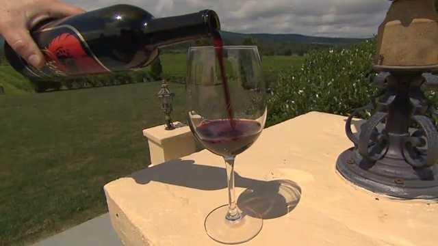 Wine Wineries Vineyard