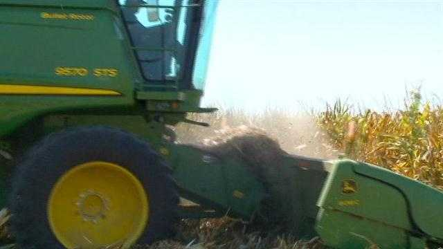 Some farmers start harvest early