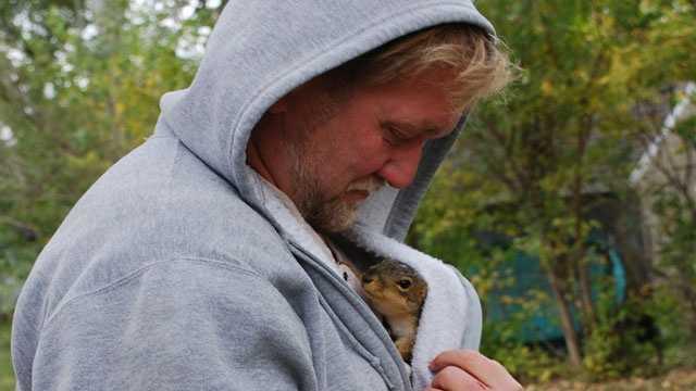Ulocal squirrel