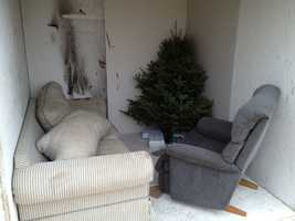 The first room is loaded with furniture and the tree that was watered daily.