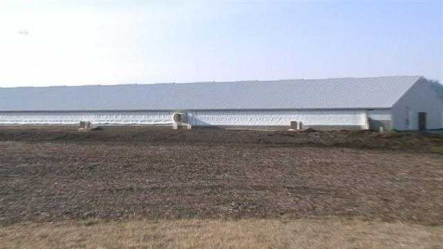 Neighbors oppose new 10,000-hog confinement plan