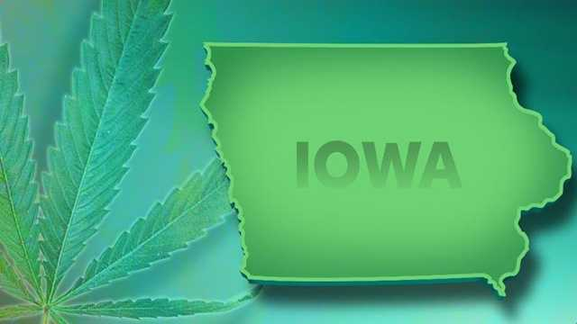 Marijuana pot graphic iowa