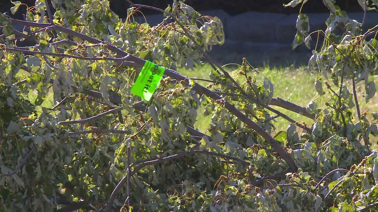 City of Des Moines offers opportunity to clean up after storms.