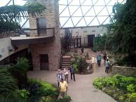 A new elevator carries visitors to the upper viewing deck.