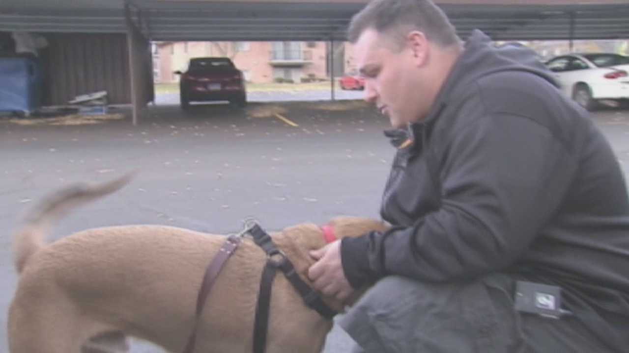 An Iowa veteran and his service dog were reunited Tuesday.