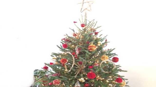 christmas tree generic