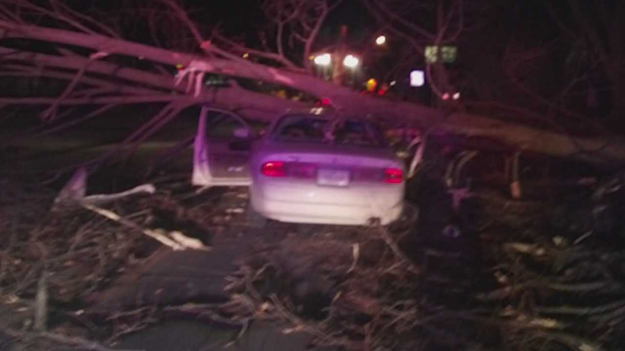 Strong winds leave couple trapped in car under tree