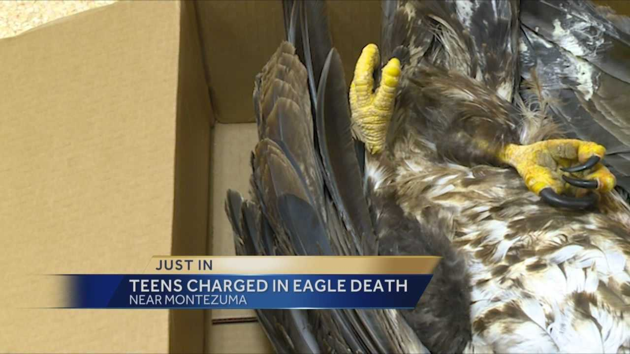 Two 15-year-old boys are charged with shooting an eagle in Iowa.
