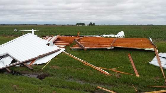 Thunderstorm force winds destroy this shed near Lenox.  The ponies inside are all OK.
