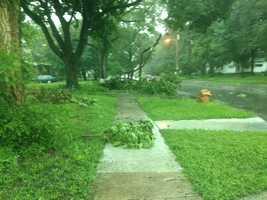 Trees down in Des Moines near 48th and College