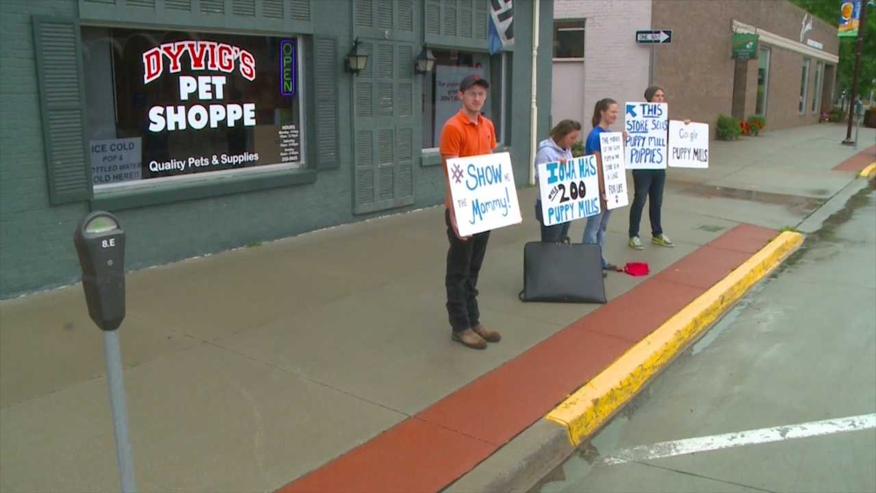 The City of Ames is taking a deeper look at its rules regarding First Amendment rights after a local business owner says protestors are a safety concern.