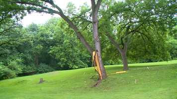 "A tree in the 2400 block of Thornton Avenue in Des Moines was hit by lightning Wednesday afternoon. The homeowner said it sounded ""like a tank mortar going off."""