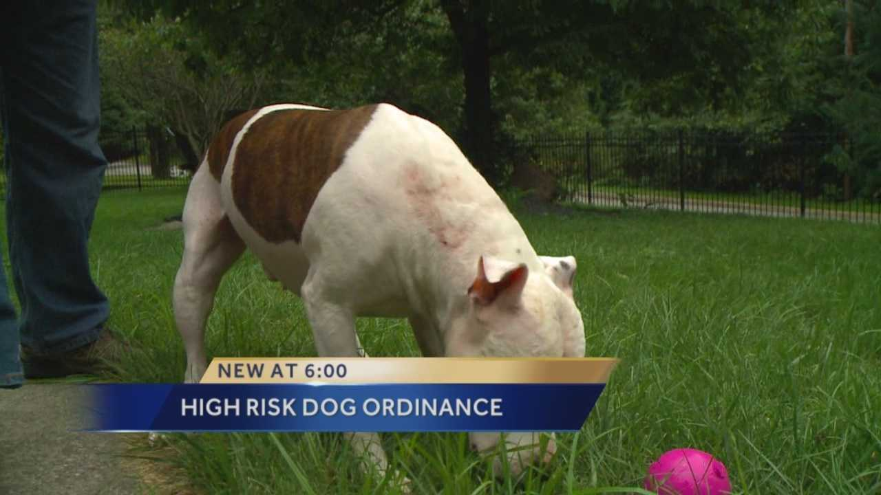 "The city of Des Moines' ""high-risk"" dog ordinance is going to court."