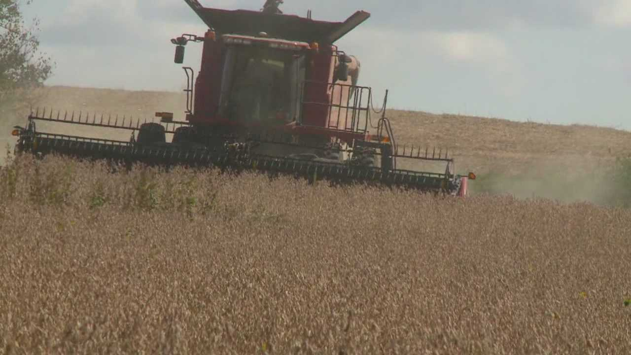 Farmers say a strong start bodes well for the rest of the harvest season.