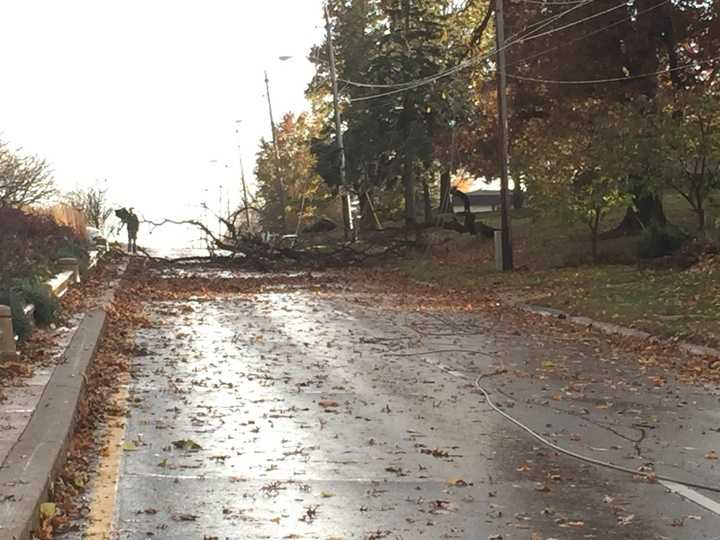 Tree down along Fleur Drive in Des Moines