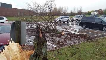 Tree damage in Waukee at Eason Elementary.