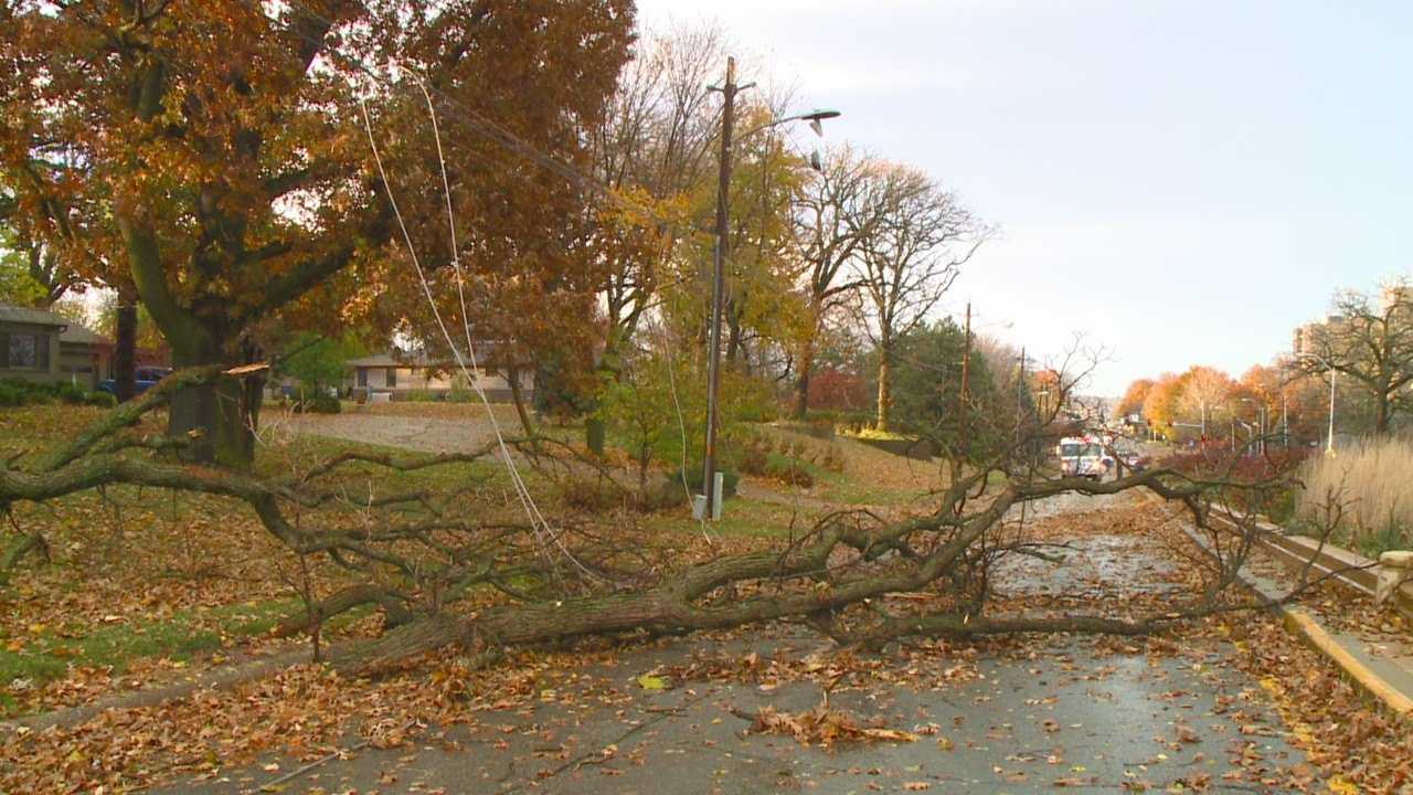 High winds blew through southwest Des Moines Wednesday night, causing massive oak trees to crumble, debris scattering everywhere and leaving neighborhoods without power.