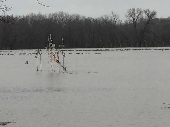 Raccoon River flooding in Water Works Park at Jolly Holiday Lights display