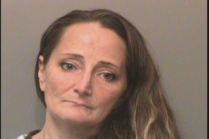 PATRICIA JANINE PALMER, 36, VIOLATION OF NO CONTACT OR PROTECTIVE ORDER (7 counts)