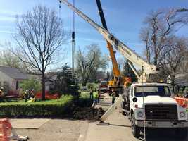 Thursday, crews are working to remove a tree from the hole and start filling it.