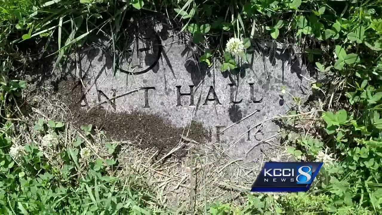 Visitors report numerous headstones at Laurel Hill Cemetery are hard to find due to overgrown grass and weeds.