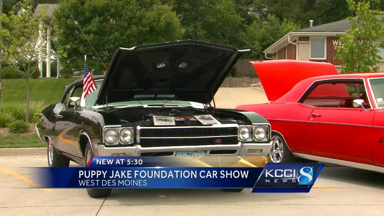 Puppy Jake Foundation provides service dogs at no cost to veterans.