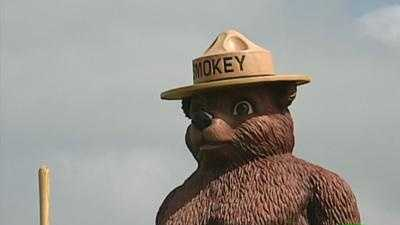 Smokey Bear - 9163938