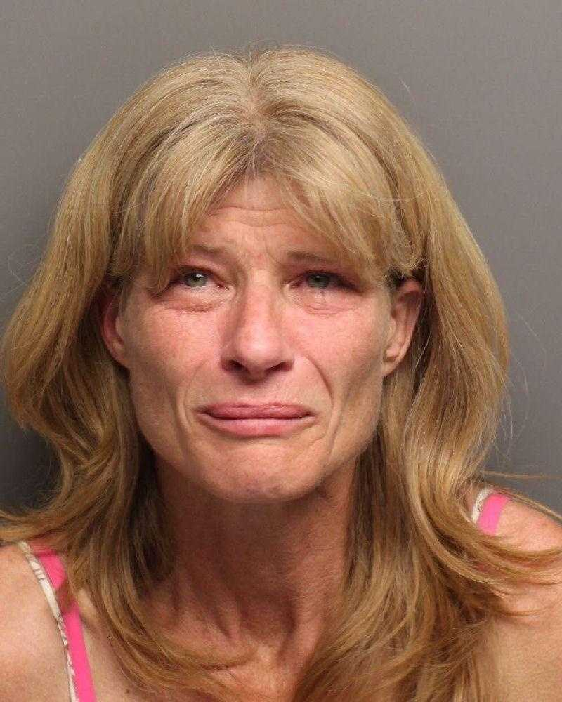 Theresa Lynette Schnackel, 45, of Rio Linda was arrested during an in-progress robbery in a day that saw two separate home burglaries in Placer County, deputies said.