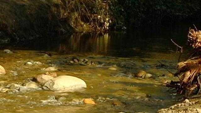 Stream Restoration Project - 29524295