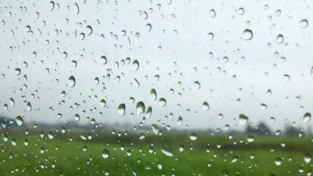 Rain generic - 26302370