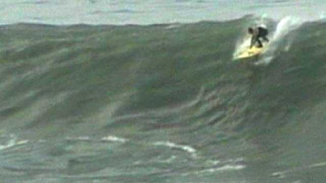 Mavericks surf surfing no bug - 19396335