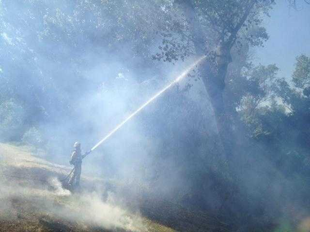 Sacramento City firefighters battled two fires that sparked along the American River parkway Wednesday afternoon, near the California Highway Patrol headquarters.
