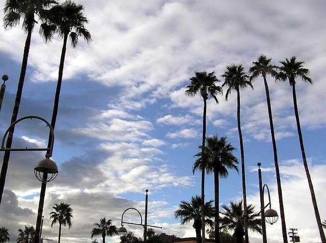 2. Arizona -- 128 degrees (June 29, 1994)