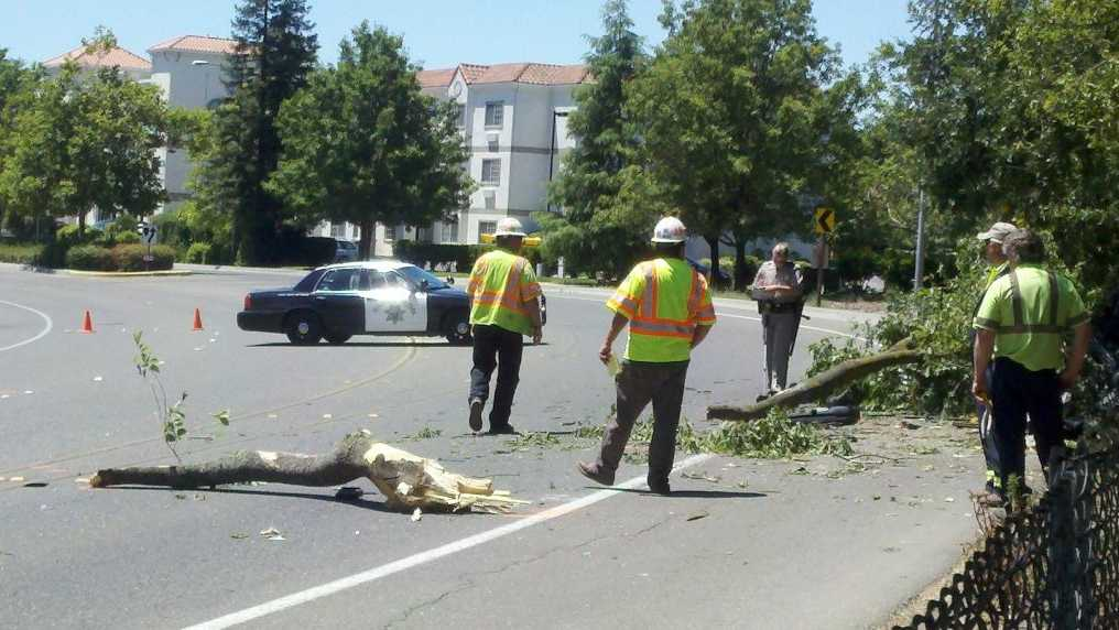 The impact of the crash sent parts of a tree on to nearby Chiles Road.